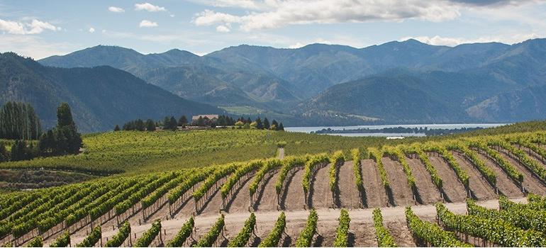 California & The Pacific Northwest – Wines Off the Beaten Path